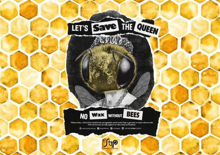heyjaey strip manila save the bees queen photo (c) strip sg