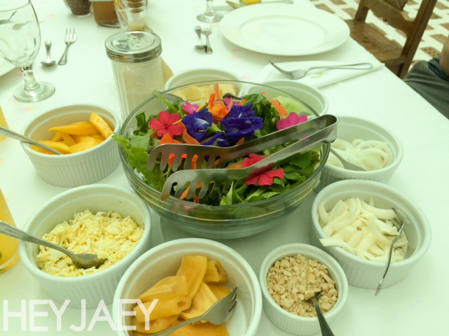 heyjaey sonya's garden salad