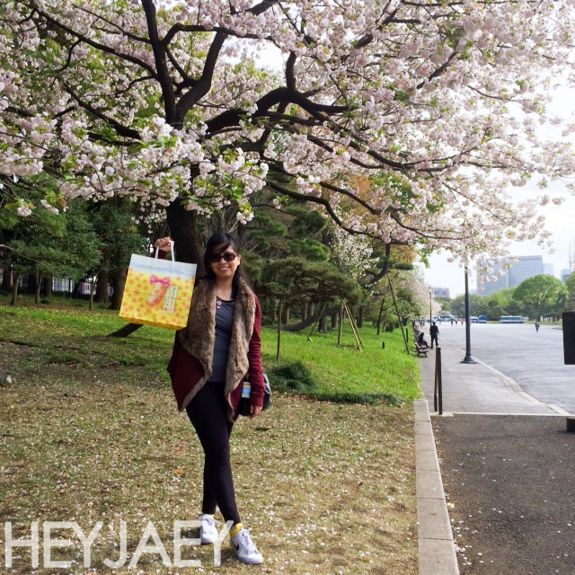 cherry blossoms and tokyo banana picnic at the Imperial Palace Garden